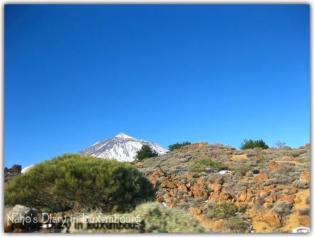 テイデ山の画像 p1_36