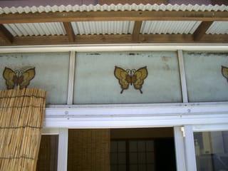 アパート1階の硝子に描かれた蝶(広島市中区銀山町)