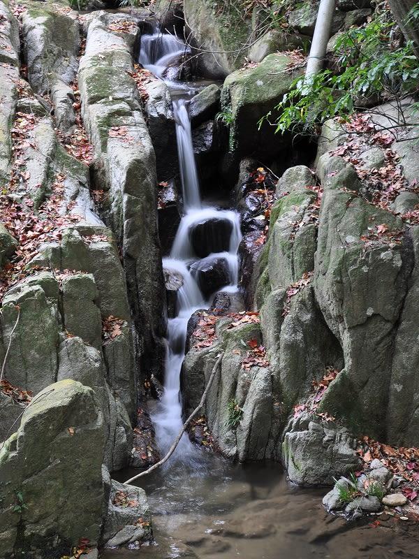 鳴川渓谷の小滝