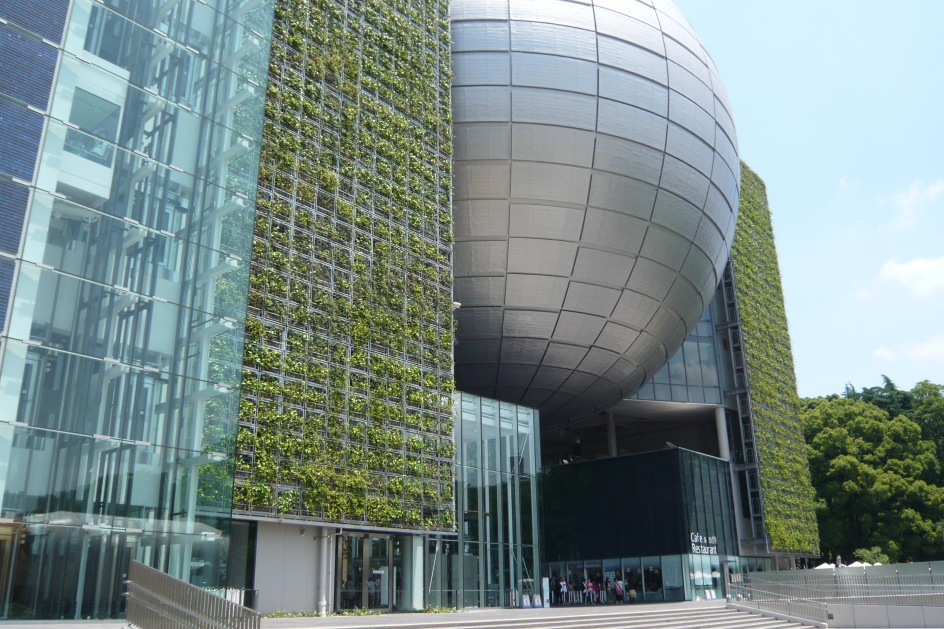 建物に緑を這わすことは絶対にしていけない事であるこれをやると建物の中の生気が吸い取られお化け屋敷になる。