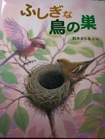 鳥の巣絵本