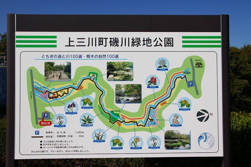 上三川町 磯川緑地公園 とちぎの「道と川百選」 24.10.26 - 栃木の ...