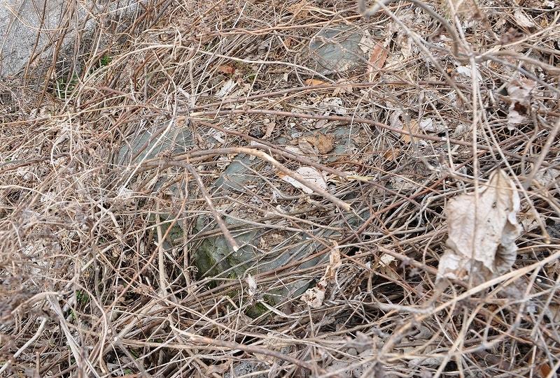 緑色片岩の板石