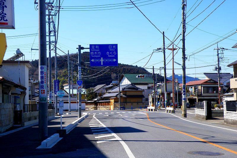 2011年3月のブログ記事一覧-栃木の木々