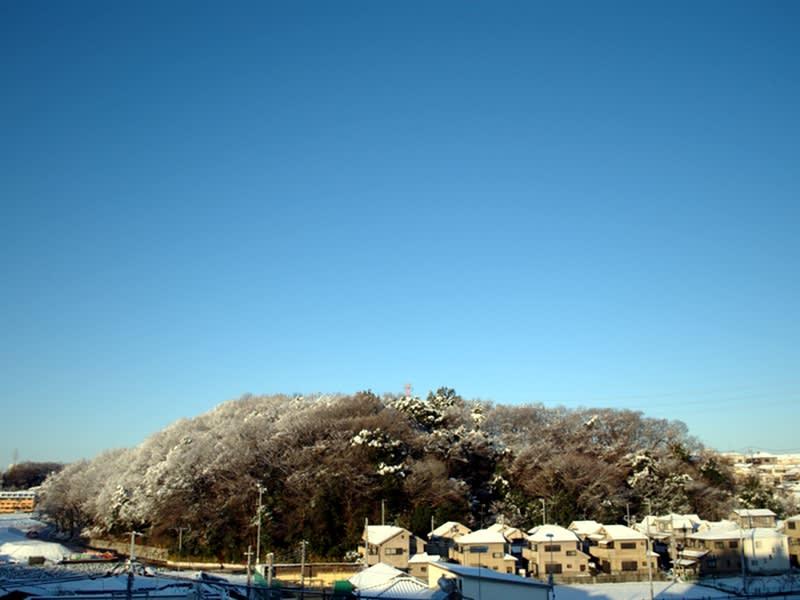 01月24日 雪の根岸台