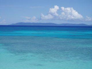 「のぞいてみよう!青い海とサンゴ礁の世界」 2008年11月7日(金) ... 11月7日「のぞ
