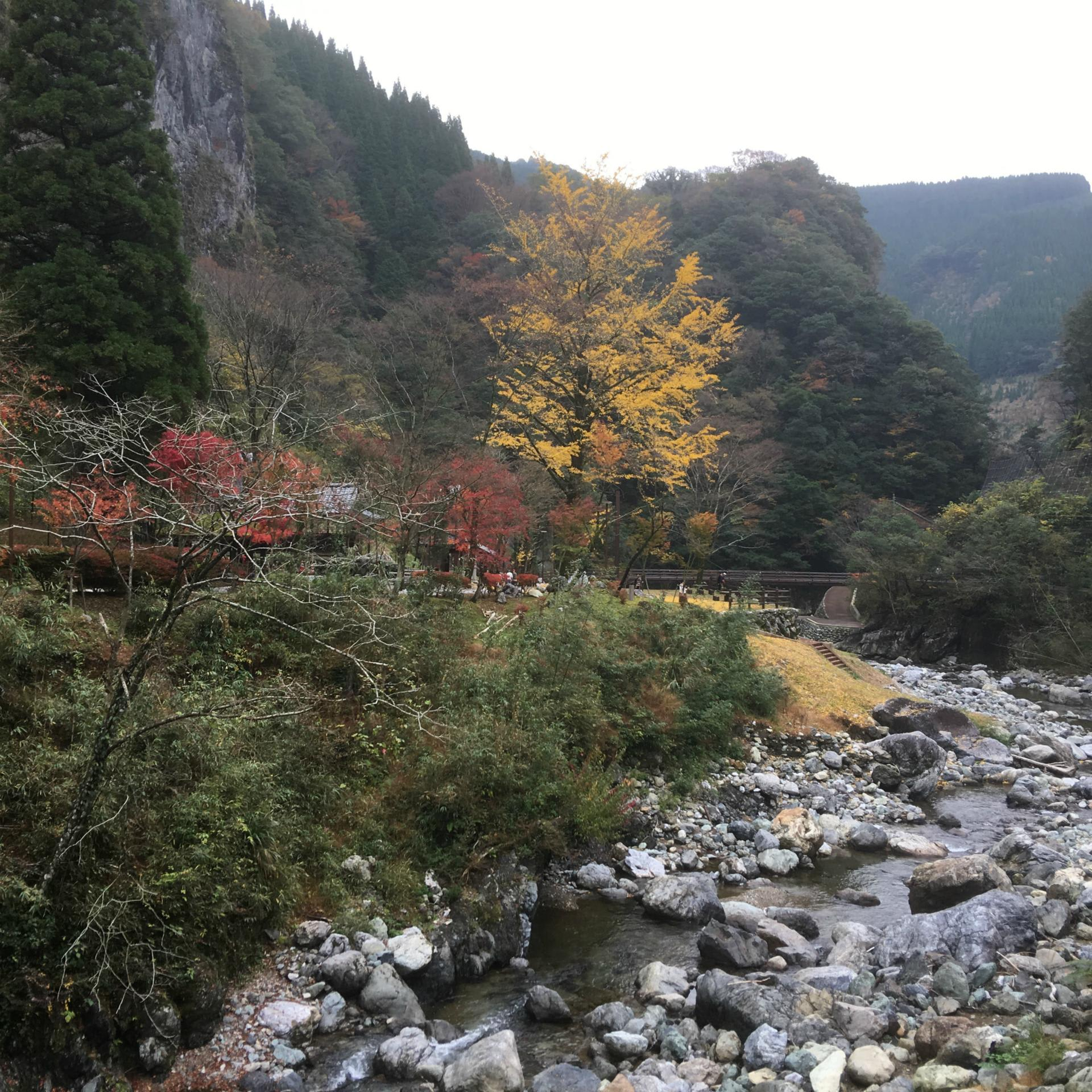熊本県球磨郡五木村へ行って来た、紅葉の時期は過ぎていたが ...