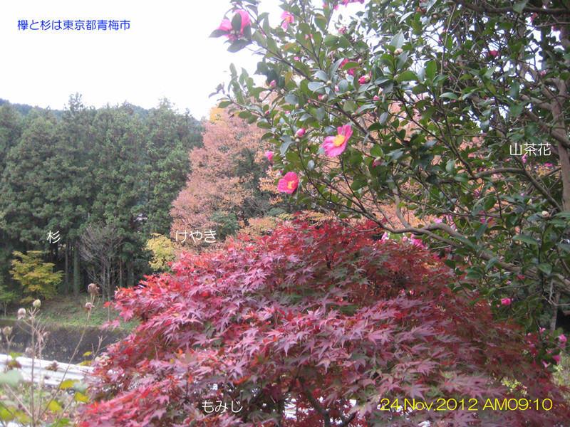 Keshiki24nov2012