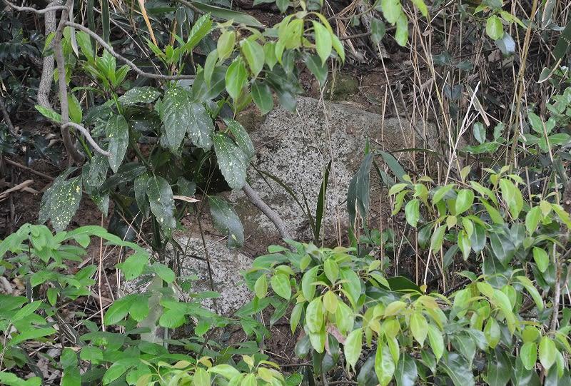 笛吹10号墳の石材