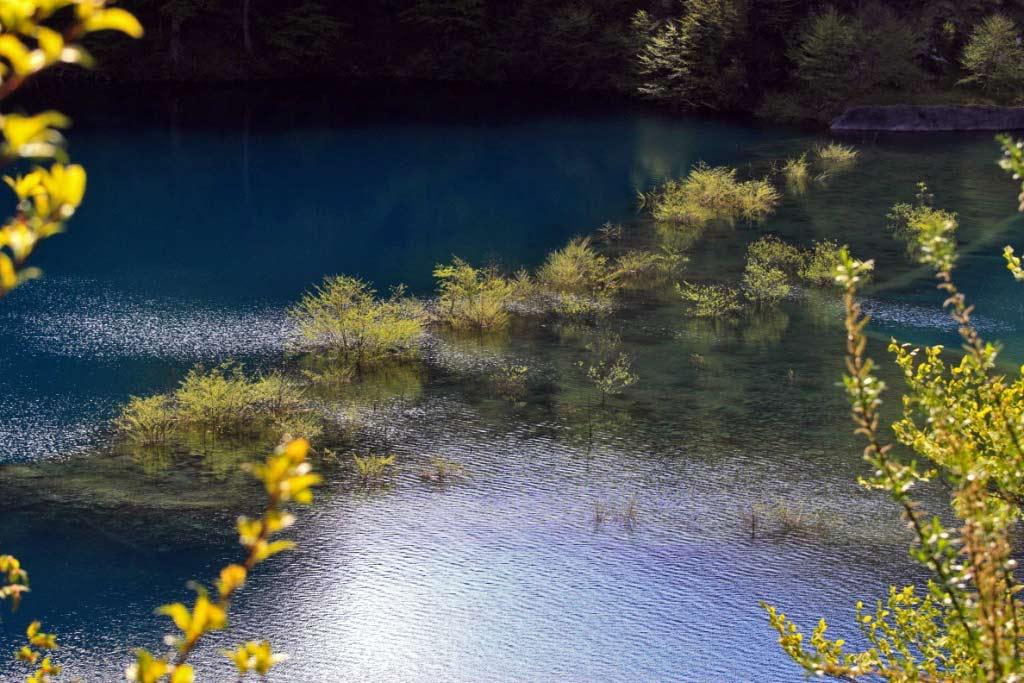 奥四万湖画像