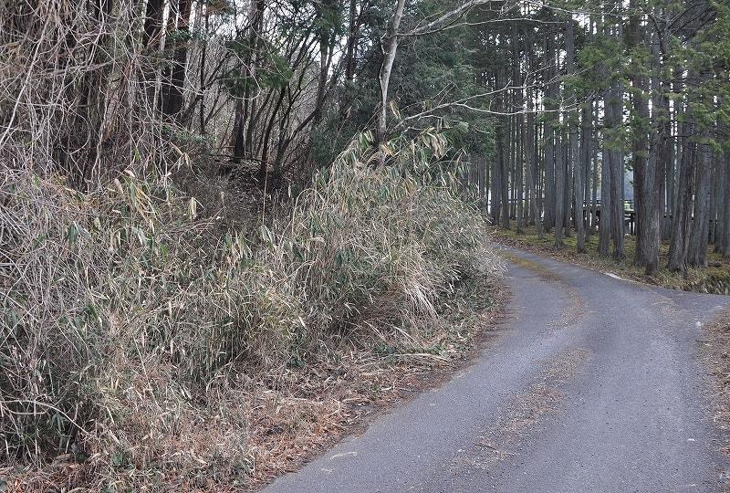 滝谷古墳前山道入口