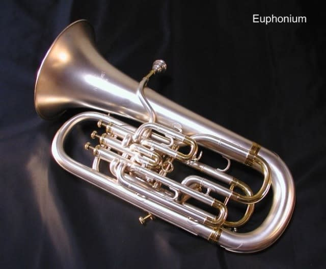 ブラス(brass)というくらいだから,金管楽器. 金管楽器にはリード... ブラスバンドをやっ