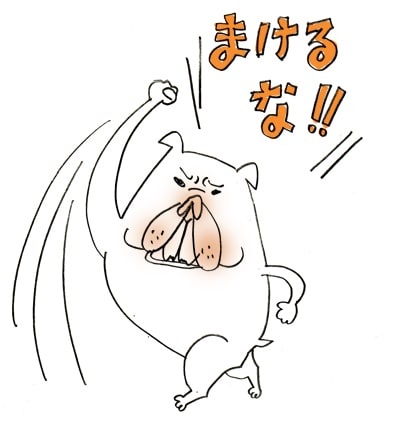 SHOJI AYANO Illustrationsons♪