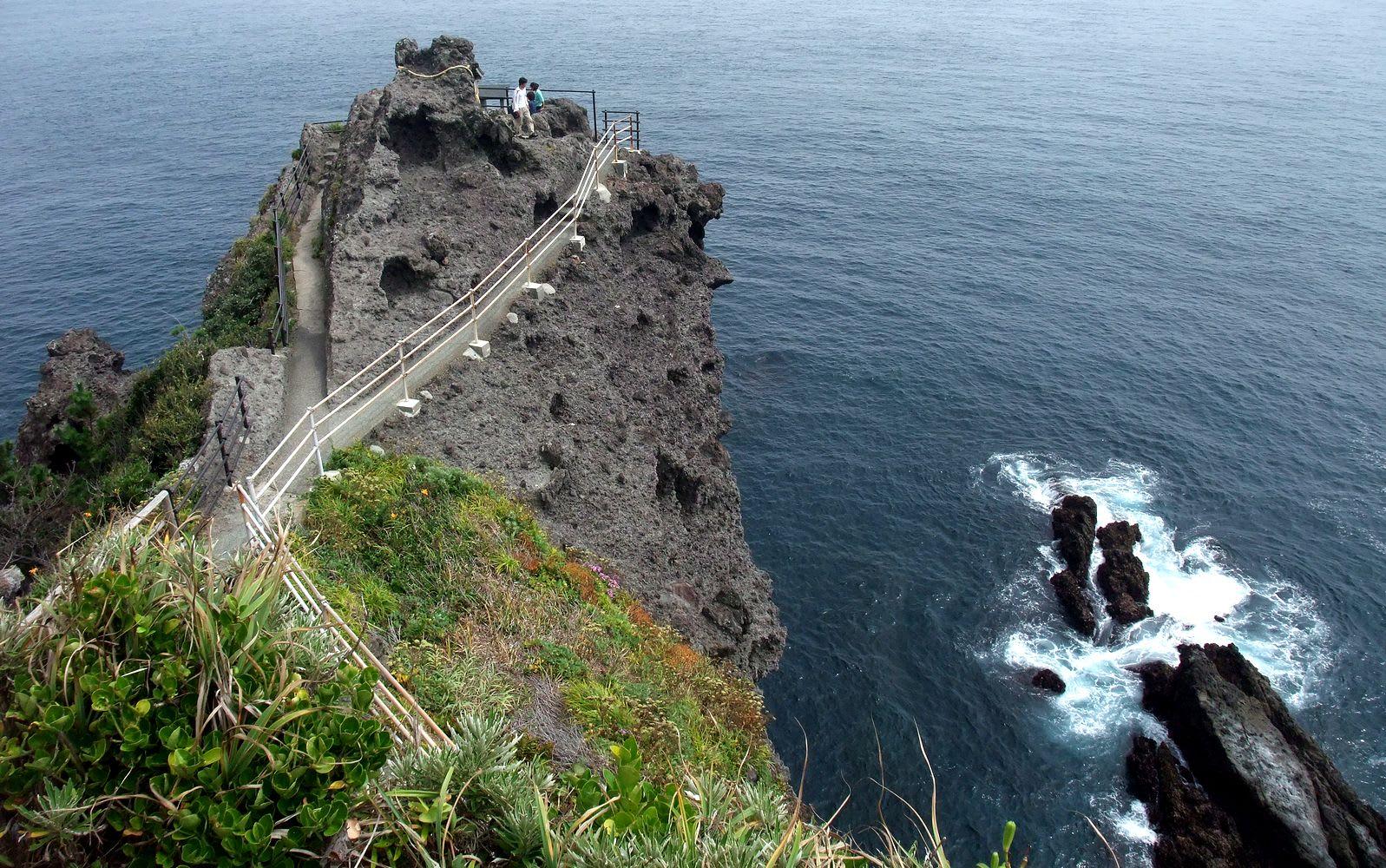 http://blogimg.goo.ne.jp/user_image/74/11/30ea0f474870f9d1ff55786b664c9254.jpg