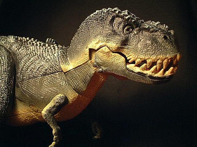 Bull v rex takara p ジャクソン 監督 の king kong の v rex