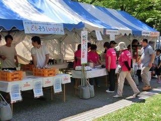 ◆地産地消の野菜販売・試食など