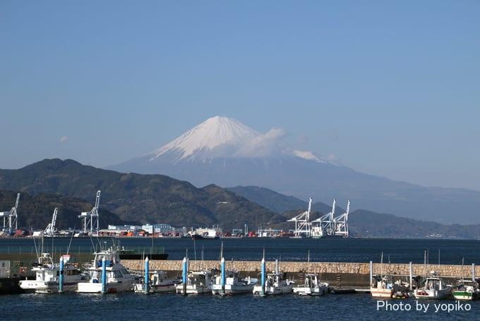 清水港から乗船。清水港は、神戸港・長崎港と共に、日本三大美港の一つだそう... 静岡市清水港~駿