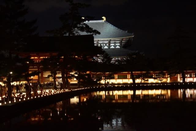 なら燈花会「東大寺」に行ってきました〜(^^)