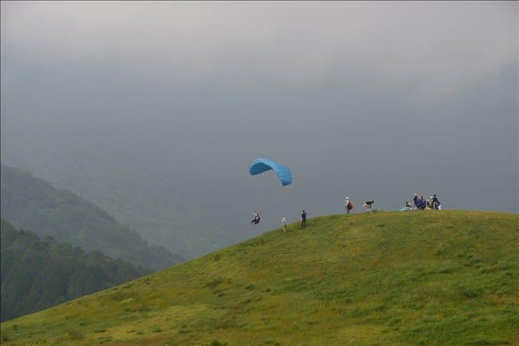 朝霧高原の牛 - 気まぐれフォトダイアリー ブログ ログイン ランダム 熊本地震の断層横ずれ、く