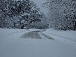 融雪道路との境界。下り要注意。勢いよく走ると雪煙が。道中には雪にはまってしまった車も。