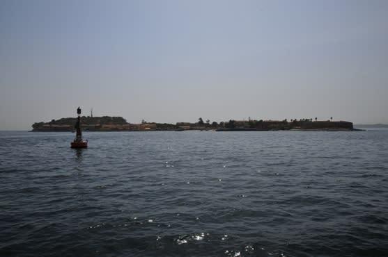 ゴレ島の画像 p1_14