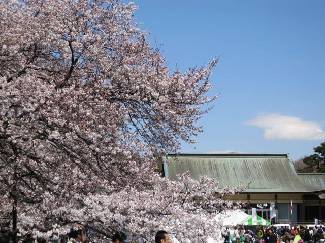 http://blogimg.goo.ne.jp/user_image/78/11/ef305e364c69fbd98d3c9ef0252c8592.jpg