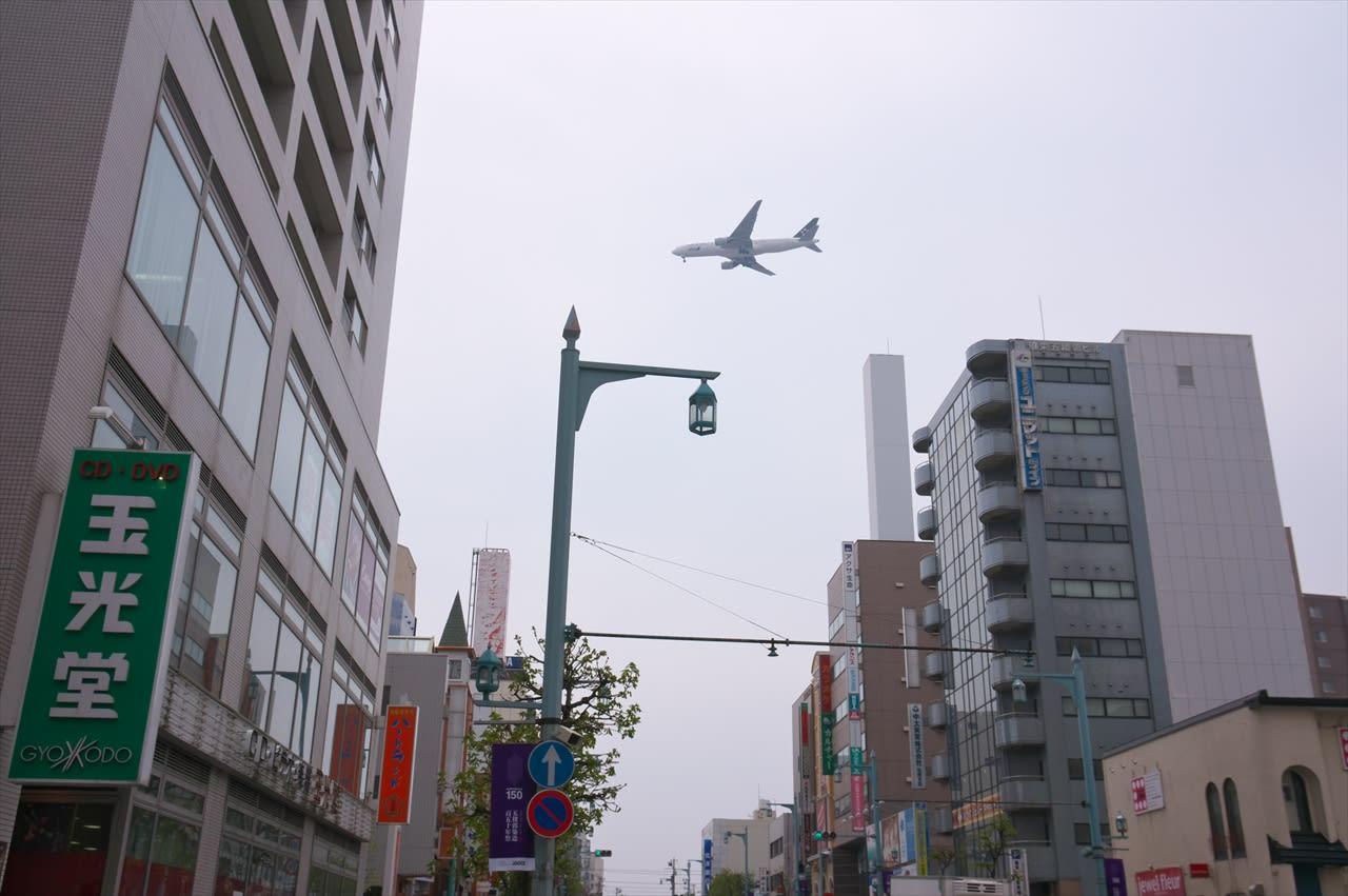 五稜郭公園交差点のライブカメラ・北海道函館市本 …
