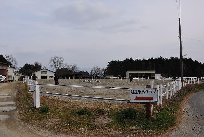 新庄乗馬クラブ