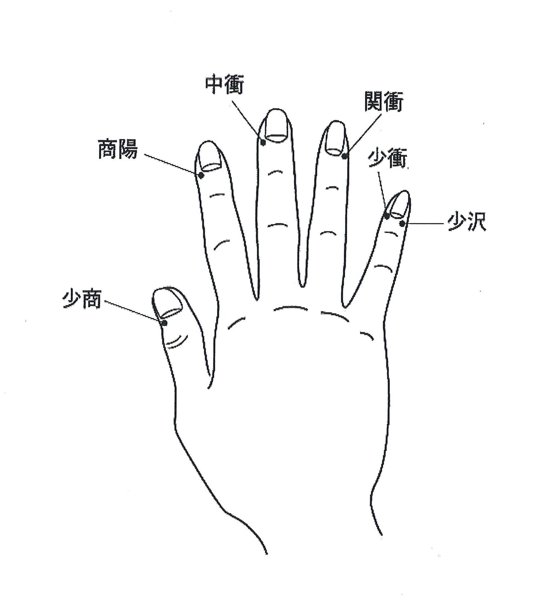 本山硯士の円心五法の真髄