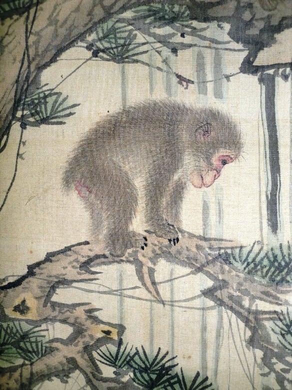 森狙仙の画像 p1_9