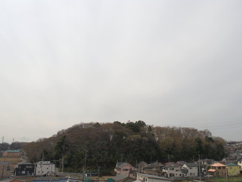 03月23日 根岸台
