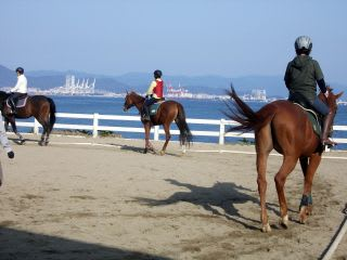 Horse」のブログ記事一覧-HORSE ...