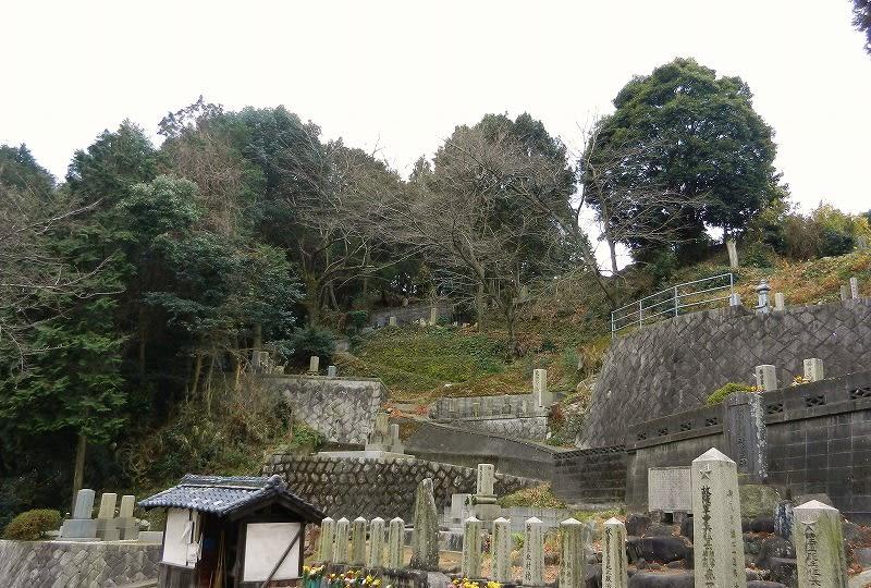 ≪行き方≫巨勢山丘陵の西端に小さな墓地があります。その墓地の最高部から薮の中に突入して、まっすぐ頂上を目指す(よじ登る)と墳丘が見えてきます。開口部は南側なので、右手に回り込めば開口部が見つかるはずですが、薮がものすごくてたどり着けません。左手に回り込んで行くと杉の木に白い紐がたくさん巻きつけてありますので、それに沿って進むと、南側の尾根に出ます。40cm程の花崗岩があるので、少し尾根を登ると開口部が見えると思います。
