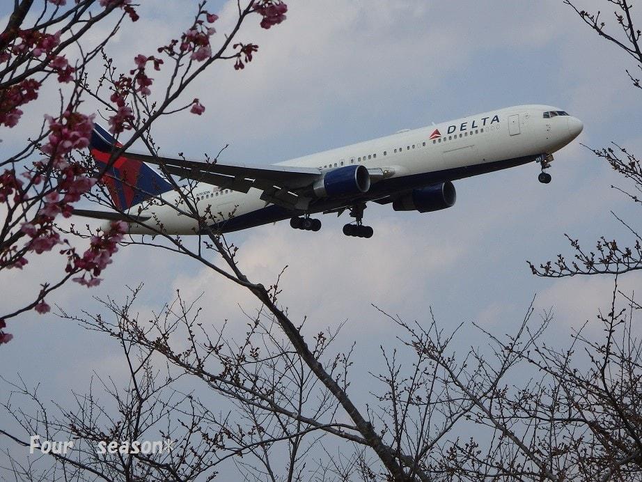 じょじょ's blog  ☆成田国際空港、飛行機の離着陸が間近一望出来る「さくら山公園」