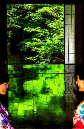 京都市左京区の実相院の「床みどり」