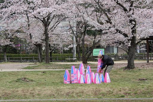 姥桜四人は片付けの邪魔にならないよう桜林の片隅で、行く春を惜しんでいた... 林 住 記