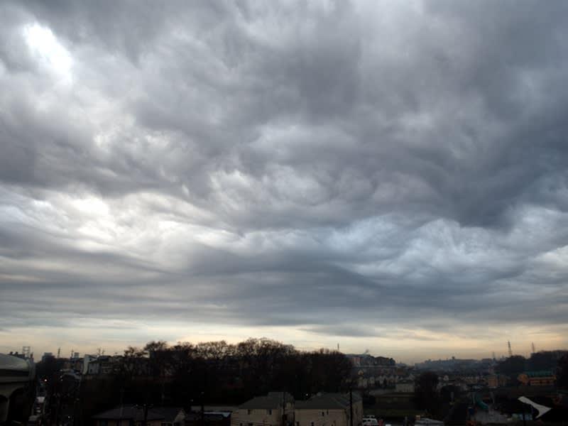 01月23日 渦巻き雲