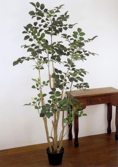 人工樹木 フェイクグリーン 造花 運営 有限会社ココーフラワー