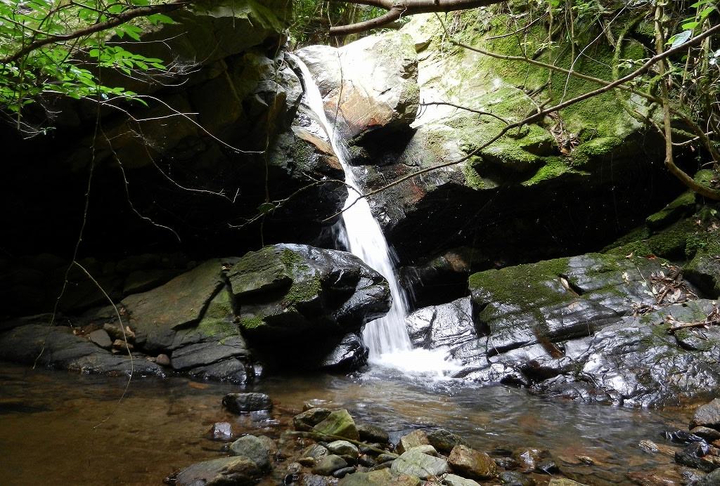 滝坂の小滝