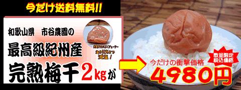和歌山県 市谷農園の最高級完熟梅の販売ページへ