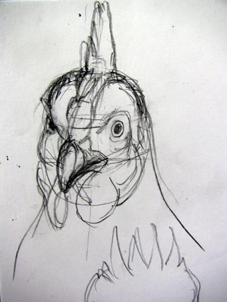 ニワトリの画像 p1_34