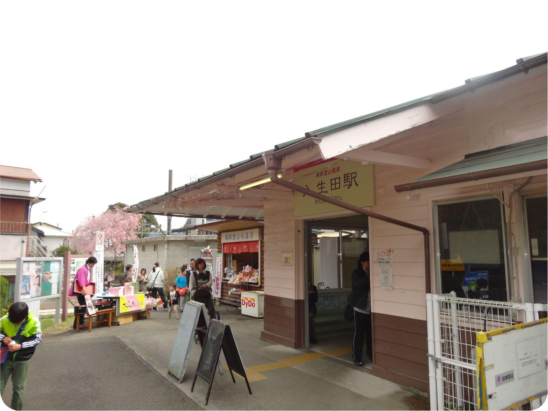 長興山しだれ桜ハイキング ...