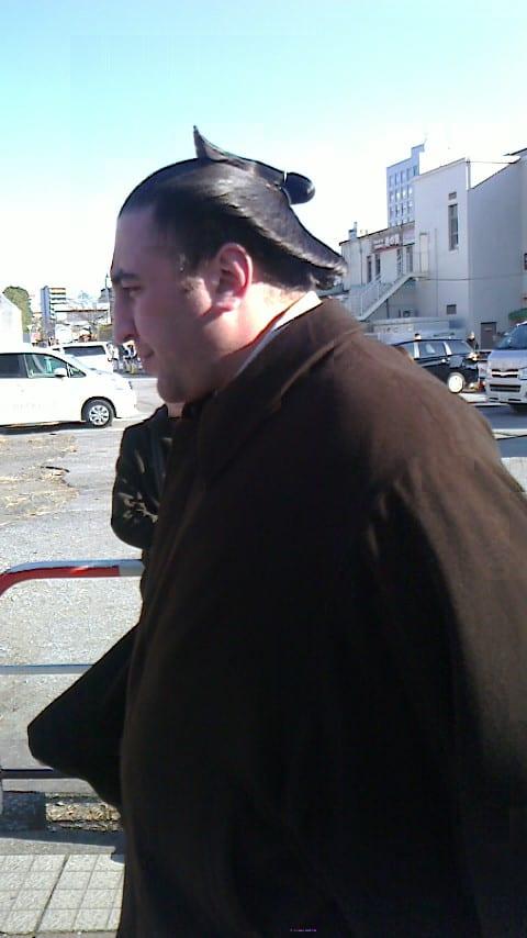 今日は祝日ということで、幕内下位から相撲中継を見ていました。そこで、嬉し... 栃ノ心、幕下優勝