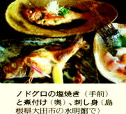 ノドグロの塩焼き&煮付け&刺身