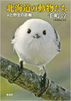 千嶋淳著『北海道の動物たち』で昔「シコツ」と呼ばれていた「千歳」の改名理由を知り深い私との地縁を