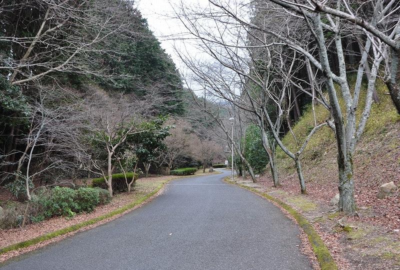 葛城山麓公園の進入路