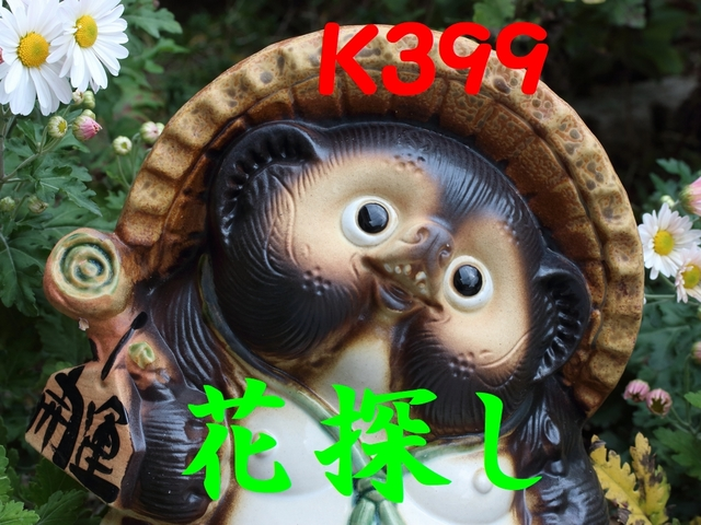 kk399