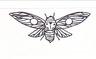 luna-cicada