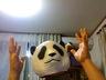 atomic-panda
