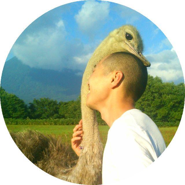 ostrichfarm